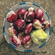 Alison Philpott, These Old Chestnuts